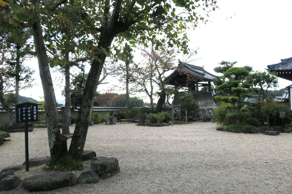 飛鳥寺の庭