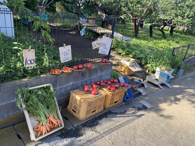 地場野菜の販売所
