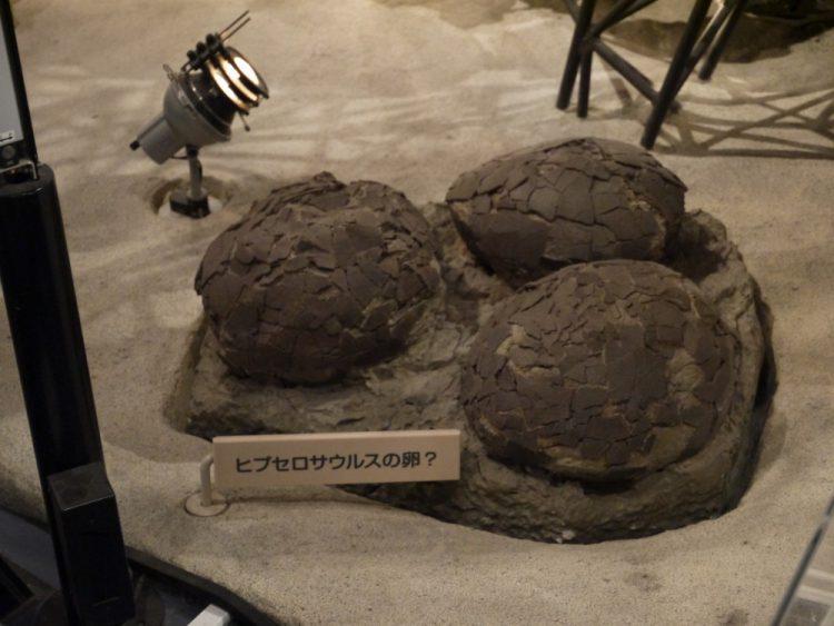 ヒプセロサウルスの卵?