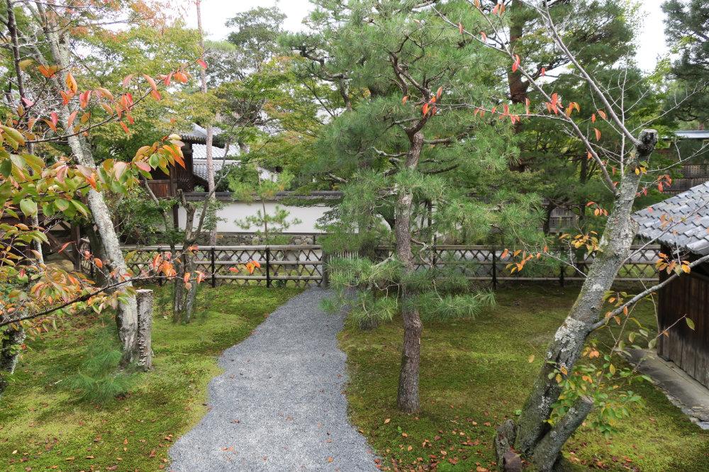 小さな庭園