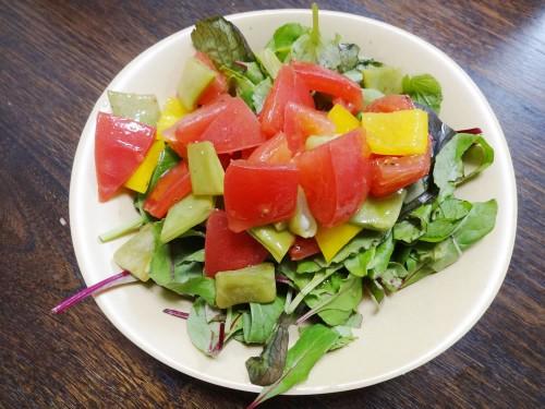 トマト、インゲン、パプリカ、ベビーリーフのサラダ